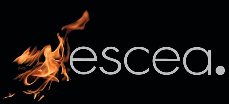 Escea Gas Fires